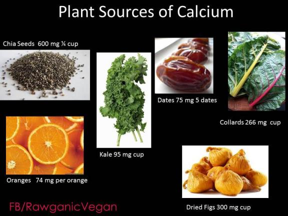 Calcium and plants