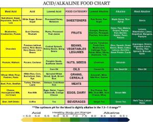 acid alkaly food chart