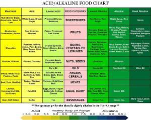acid alkaly food chart