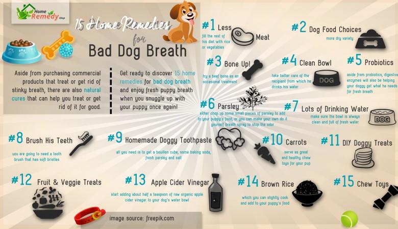 15remedies_Bad-Dog-Breath-780x450